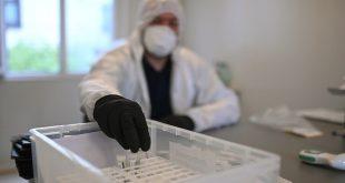 أكثر من 17.67 مليون إصابة بكورونا حول العالم والوفيات تتجاوز النصف مليون شخص